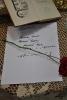 Fredro jak żywy w Raszówce - Narodowe Czytanie 2013_1